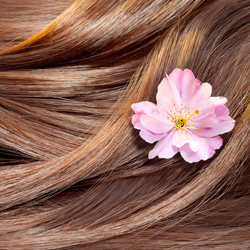 Fort Myers Hair Color Correction