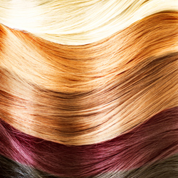 Fort Myers Hair Color